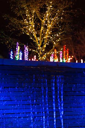 2014 - Bellevue Botanical Garden Christmas