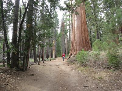 2014-09 Yosemite
