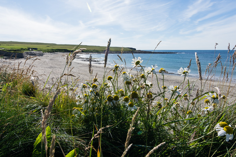 beach near skara brae, Orkney, Scotland.