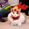 Reindeer Kitties 013