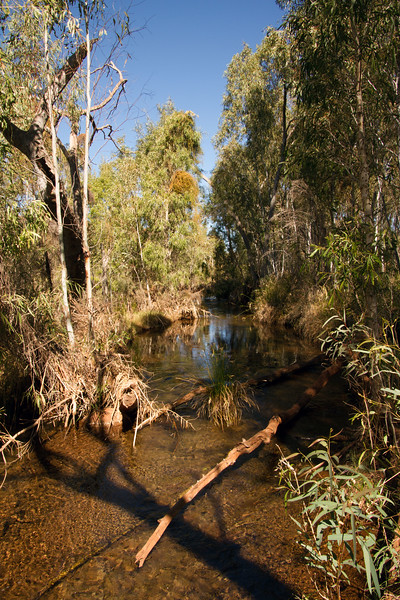 The creek at Weeli Wolli