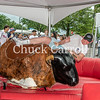 4th Fest 2019 Bull Riding - July 4, 2019  - Chuck Carroll