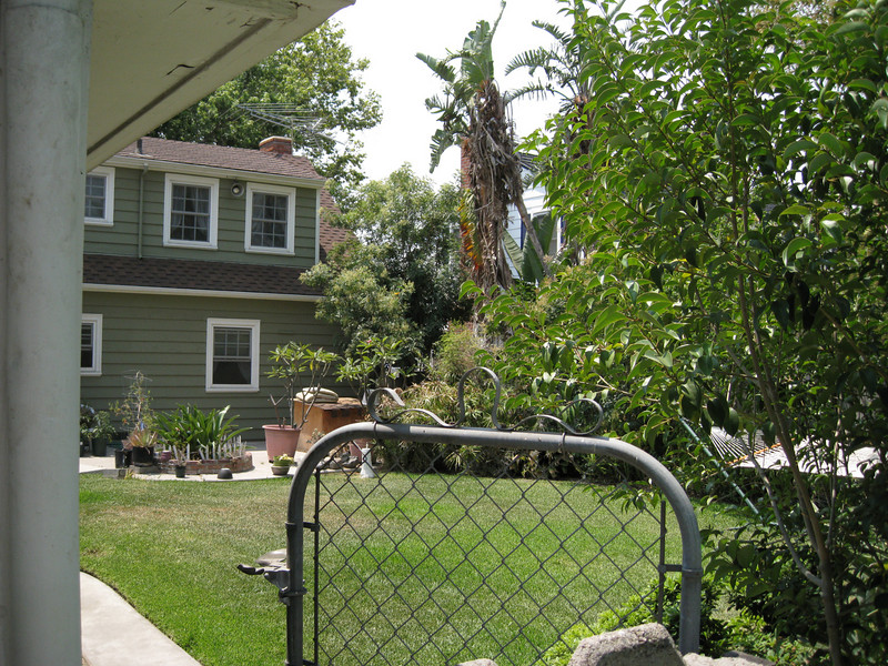 Part of the first backyard
