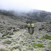 The walk from Shira camp to Barranco camp.