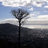 View from the bottom Cable car station, Table Mountain.