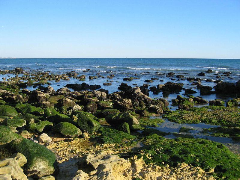 De kust van Olhos de Agua