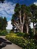 The gardens at Plas Newydd