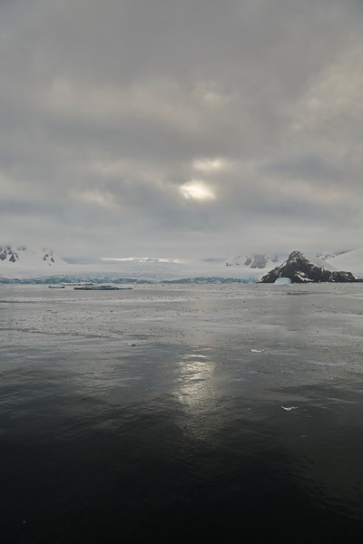 Antarctic Cruise - Day 6 - Yalour Islands - Early Morning Light 1