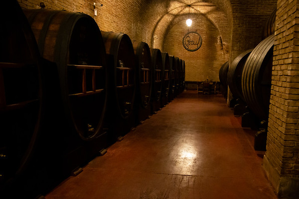 Bodegas y Cavas Weinert has a different approach when compared to other wineries we've visited. They prefer larger barrels and wine will spend longer time inside.