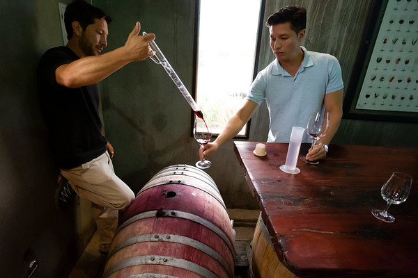 At Bodega Azul we had the chance to try one of their experimental wines. It wasn't ready to be bottled and there was a chance it will never get to that stage.