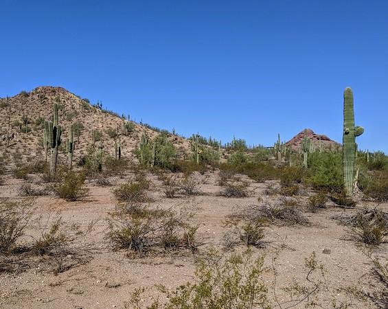 October 2019 - Laurence in Arizona
