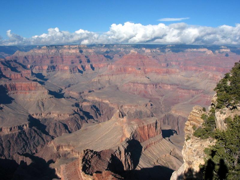 Grand Canyon Rim 29