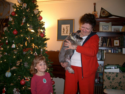 Aunt Claudia's Christmas Tree - November 2005