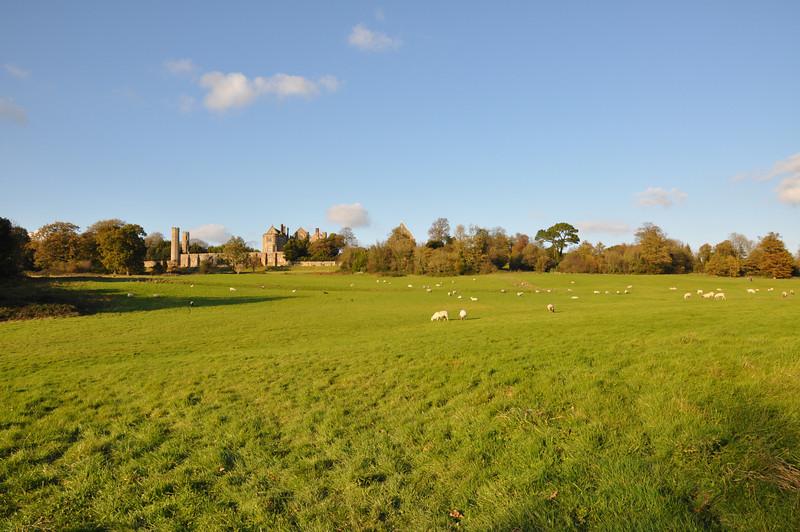 1066 battleground