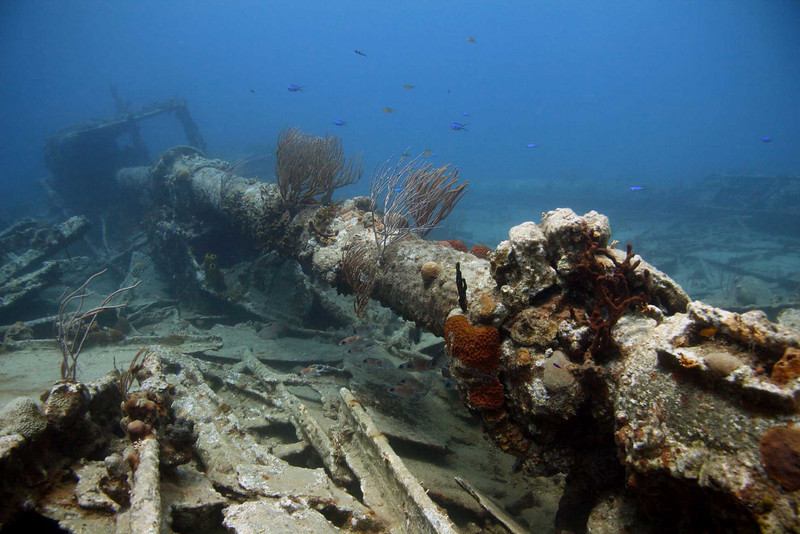 RMS Rhone - the exposed section of the prop shaft