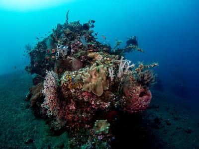 Korallenblock, Teluk Karang Bondalem