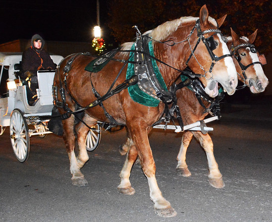 Debbie Blank | The Herald-Tribune<br /> At 7:30 p.m., people were still enjoying horse-drawn carriage rides and Hill-Rom bells were playing seasonal carols.