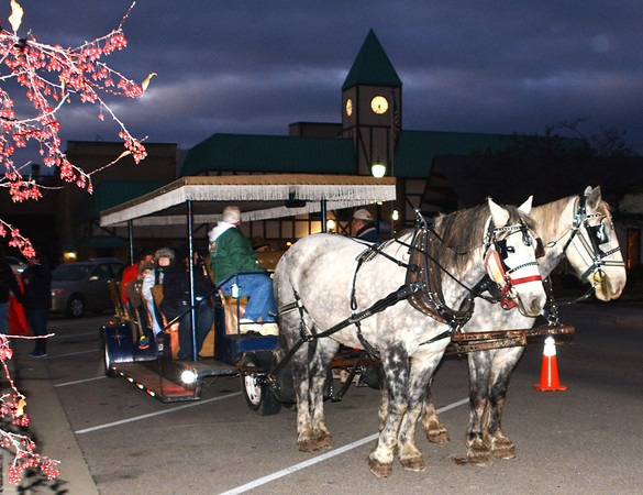 Debbie Blank | The Herald-Tribune<br /> The Mayor's Youth Council organized two types of carriage rides, one that could hold a lot of riders and another smaller one.