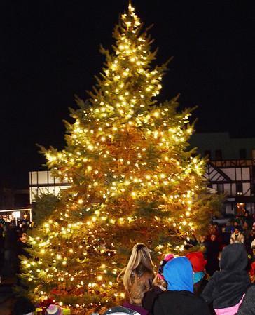 Debbie Blank | The Herald-Tribune<br /> Batesville's holiday tree was lit near the bike park at 6 p.m. Dec. 1. The 24-foot-tall white pine was graciously donated by Mary Bettice.