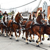 Debbie Blank | The Herald-Tribune<br /> High-stepping Westerfeld Belgian horses dazzled parade-goers.