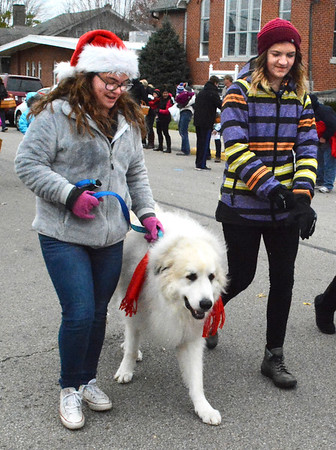 Debbie Blank | The Herald-Tribune<br /> This dog had the best fur coat of all.