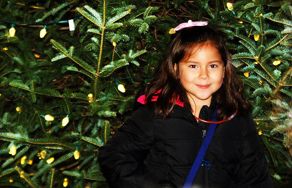 Debbie Blank | The Herald-Tribune<br /> Cassandra Meneses, 7, Batesville, was one of many kids who posed for their families in front of the lit tree after the ceremony.