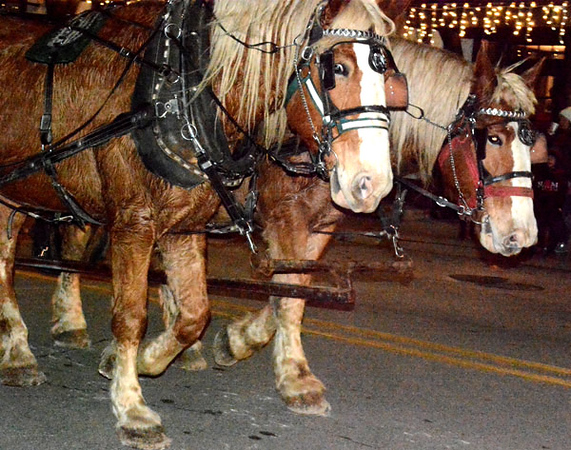 Free horse-drawn carriage rides were part of the fun.