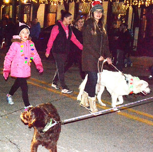 """""""Aaaawwwhhh"""" was the general sentiment when dogs appeared in a cluster during the parade."""