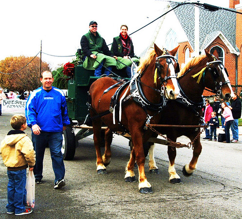 Debbie Blank | The Herald-Tribune<br /> Westerfeld Belgians pulled a cart containing the city's holiday tree, which was donated by Bohman's Christmas Tree Farm.