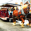 Debbie Blank | The Herald-Tribune<br /> Gigantic horses and Oldenburg Academy students help to advertise the town's upcoming Holiday Under the Spires.