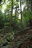 Berkshire 2012 - Bash Bish Falls 03