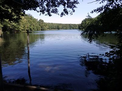 Day 3 Lake swimming