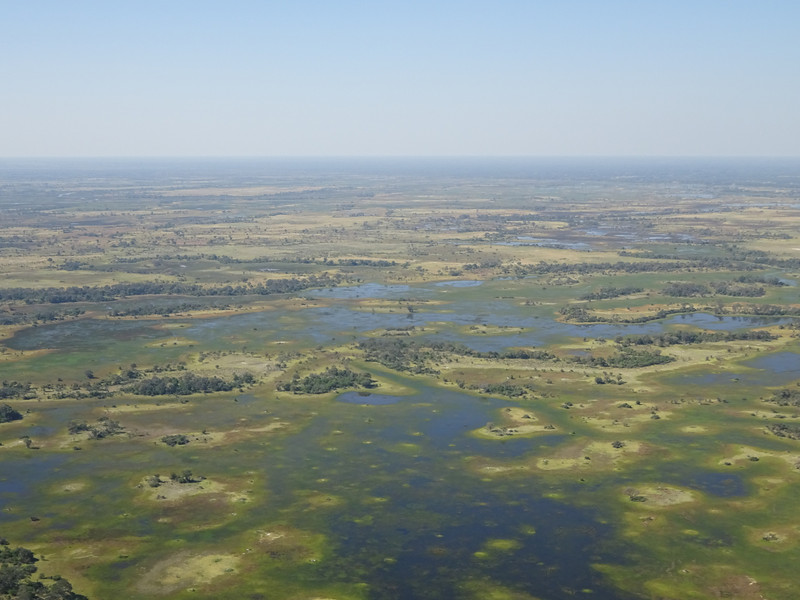 OK - next up Botswana, Part 2, the Okavango Delta