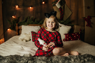 Bryant-Christmas Mini 17