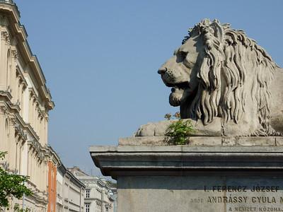 Lion on Széchenyi Lánchíd, the Chain Bridge
