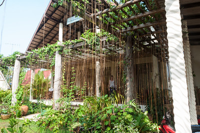 The Mangrove Hide Away