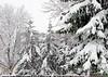 NOVEMBER 2015 FIRST SNOW_