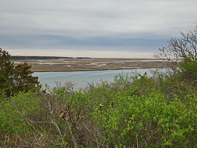 Cape Cod - Fort Hill Trail 14