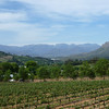 The view of the Frandschoek valley from lunch.