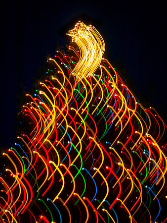 Chagrin Falls Abstract Tree Lights - 2013