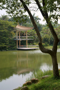 20090901_3125 ornamental lake and pavilion at Guangzhou (South China) botanical gardens 华南植物园.  Tree : cinnamonum camphora (Linn.) Presl