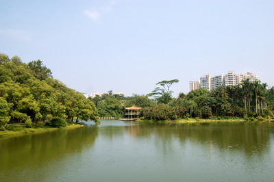 20090901_3128 overlooking the main lake at Guangzhou Botanical Gardens.  Maybe I was fortunate that there was a bit of blue sky in Guangdong province!