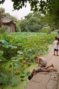 20090809_1614_2756 Lianhu Lu park 莲湖路