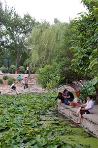 20090809_1658_2764 This was the fifth year that I stayed in Xi'an for at least a few weeks, but only the first time that I visited this park, which was only two bus stops away (or not such a long walk). I wish I had come earlier, it is a reasonable place to relax, although quite busy on weekends.