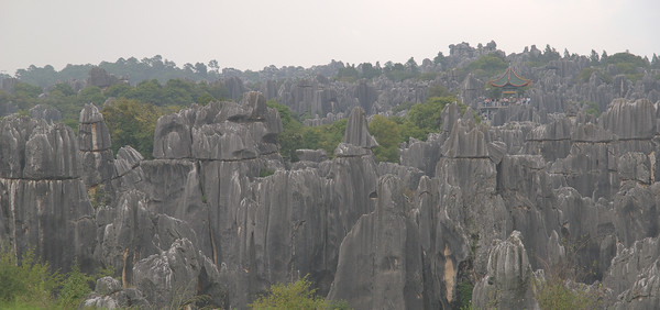 20070827_0454 Stone Forest (ShiLin), a day trip (two hours by bus) from Kunming. Once again, all the timestamps are wrong.