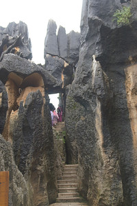 20070727_0484 Stone Forest