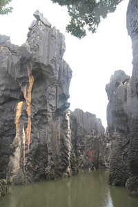 20070727_0482 Stone Forest