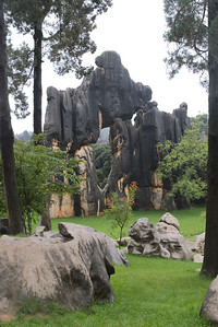 20070727_0486 Stone Forest