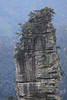 Hunan - Huangshi Town - Close-up of Narrow Pinnacle