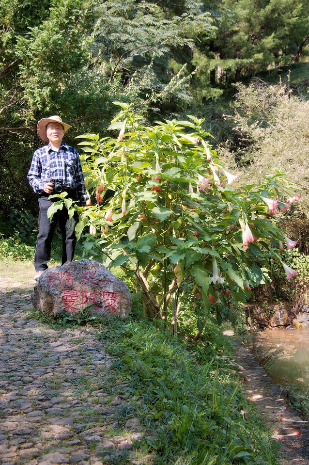 20080924_1669 Garden next to ZhouCheng. MoGui.